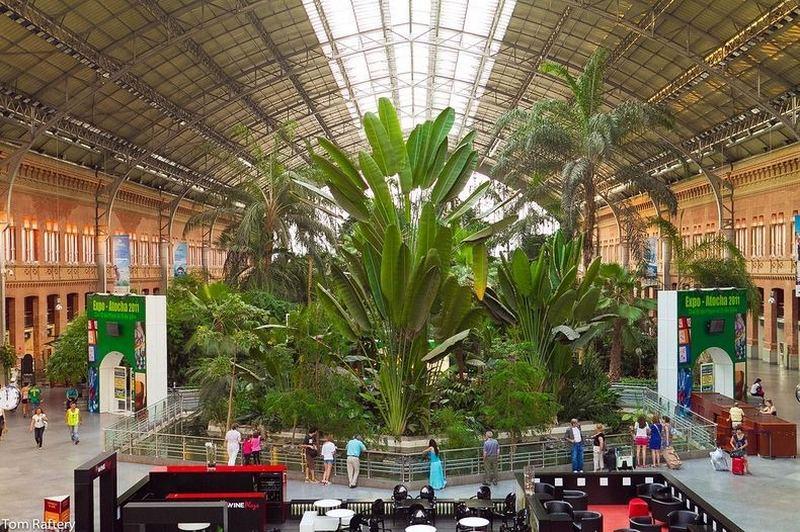 Тропический сад вокзала Аточа в Мадриде