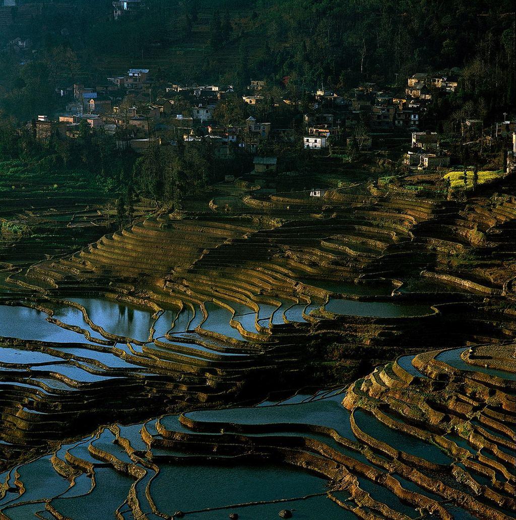 Китай в фотографиях thierry bornier