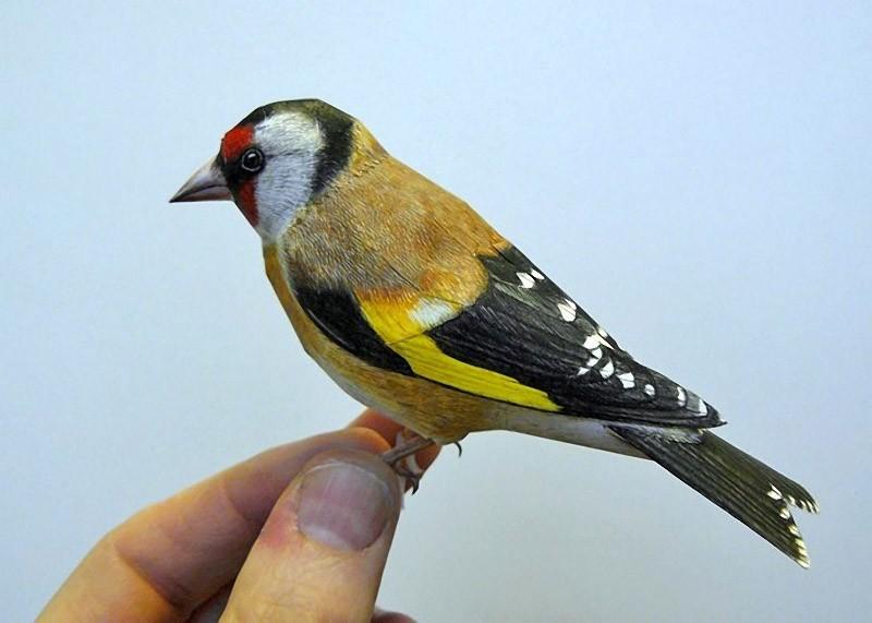 Птицы из бумаги от художника Джоан Шерфта