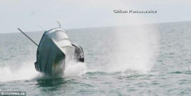 Как кит переворачивает лодки
