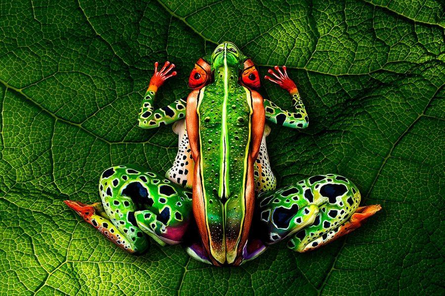 Природный боди-арт от Йоханнеса Стоттера