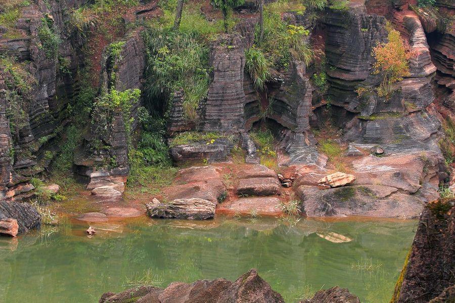 Красный Каменный лес
