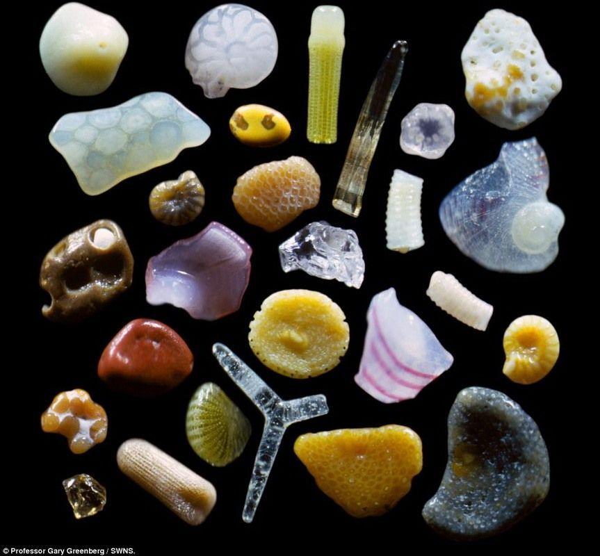Крупинки песка под микроскопом