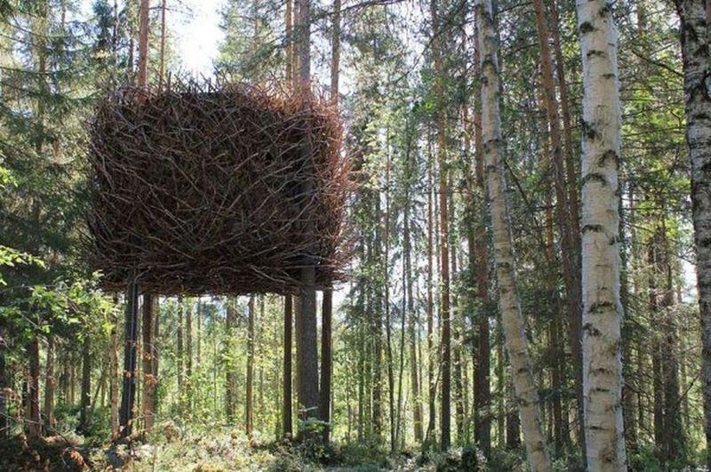 12 удивительных экопроектов домов на деревьях