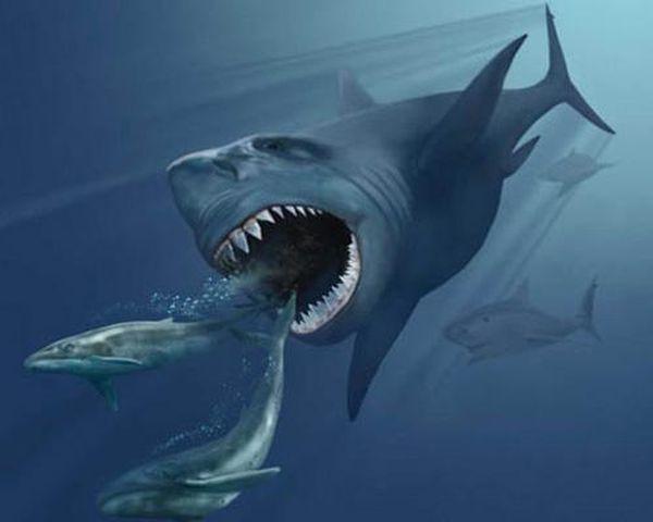 10 самых больших животных живших на нашей планете