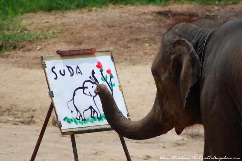 Самые выдающиеся живописные полотна, созданные животными
