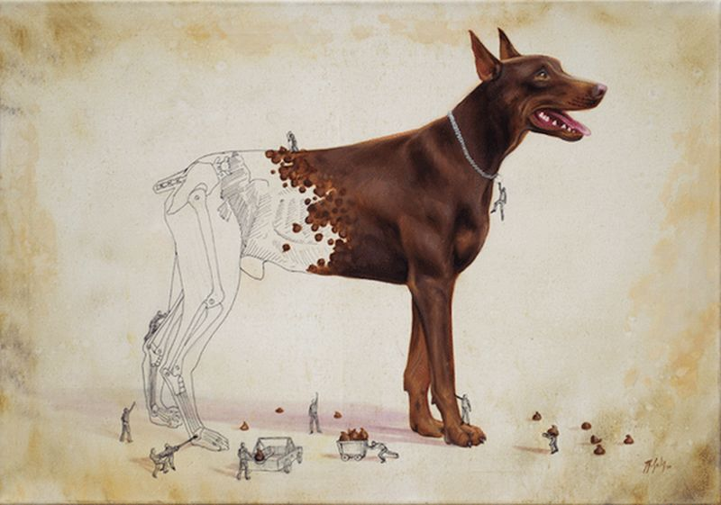 Иллюстрации, объясняющие откуда берется окрас шкуры животных