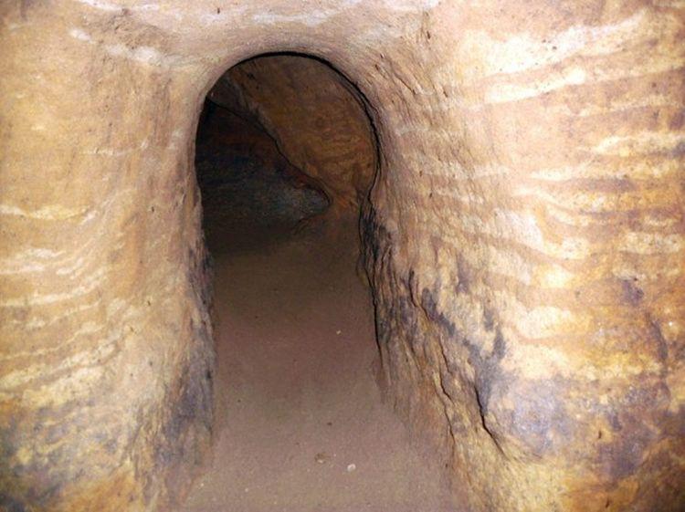 д/ф туннель в древний мир торрент