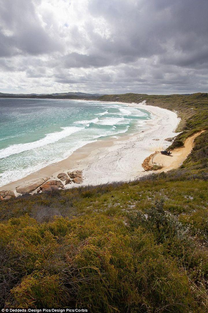 У берегов Австралии выловили самую старую рыбу в мире