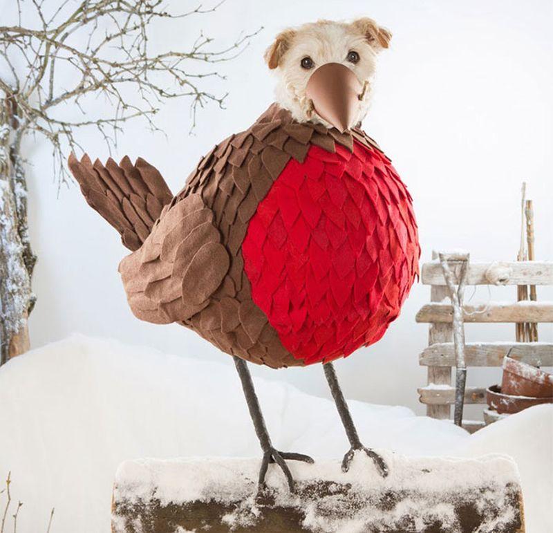 Новогодняя фотосессия пса по кличке Раггл