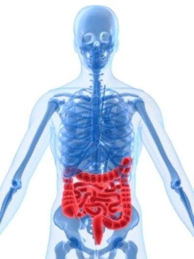признаки заражения организма паразитами
