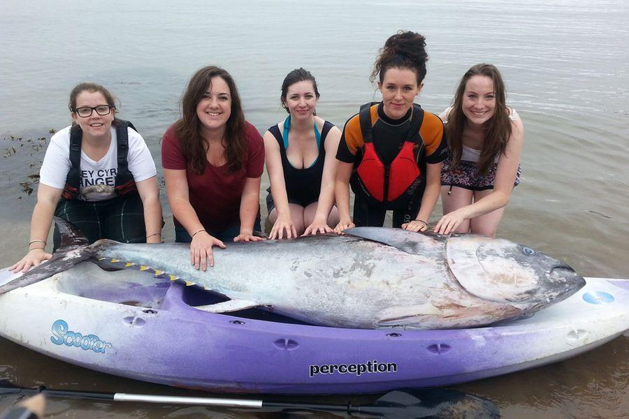 Британские туристки нашли голубого тунца стоимостью 1,7 млн долларов