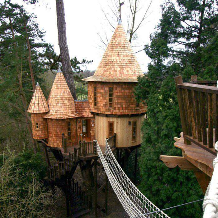 Британская семья поселилась в домике на дереве
