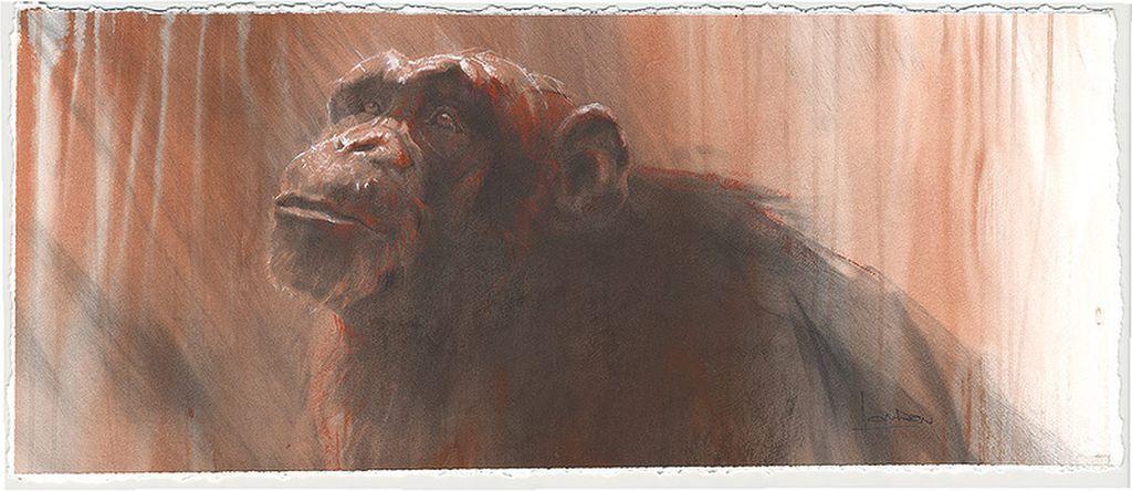 Портреты животных акварелью Анне Лондон