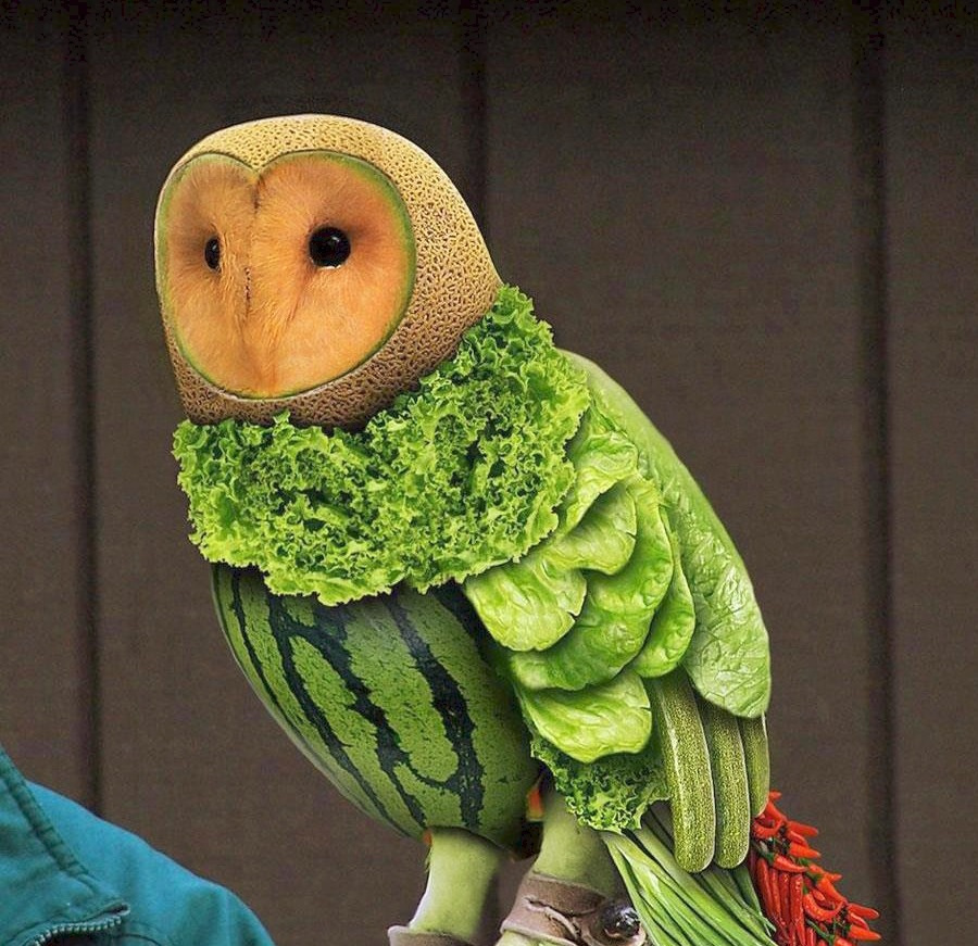 Животные из овощей своими руками для детей