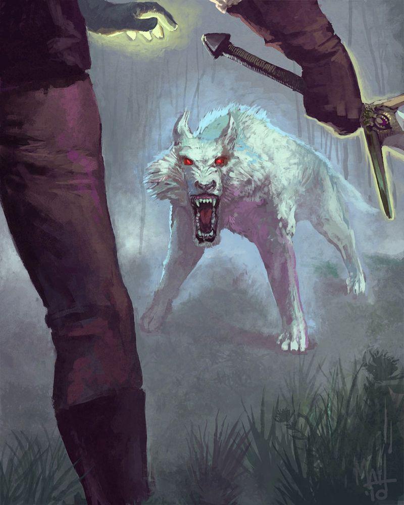 Малоизвестные факты о волках