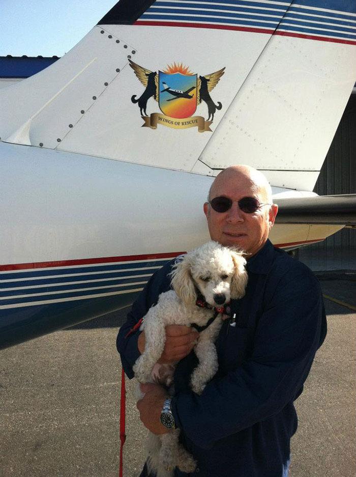Лётчики-волонтёры спасают бездомных собак от усыпления, доставляя их новым хозяевам за тысячи километров