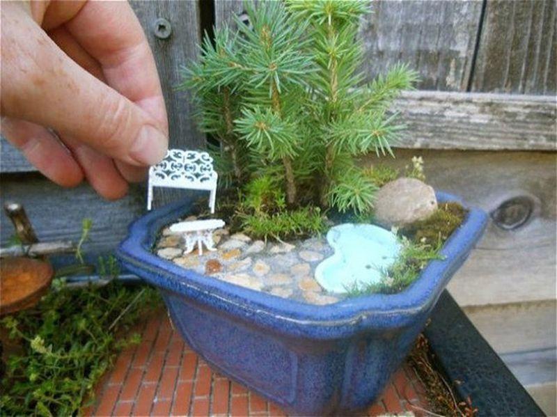 20 мини-садов, которые поместятся в ладошке