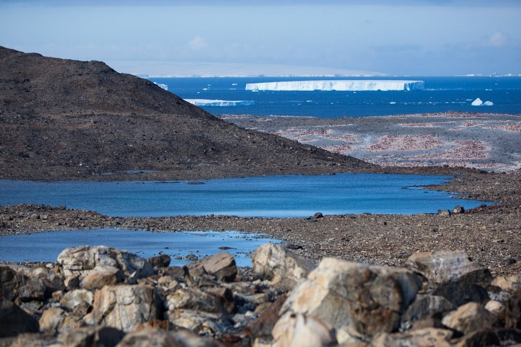 Цветная Антарктида