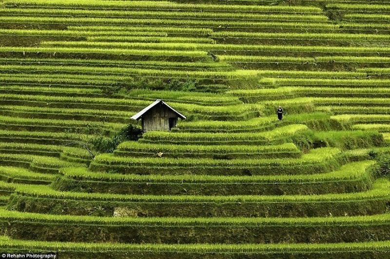 Фотодневник: Вьетнам – мозаика контрастов