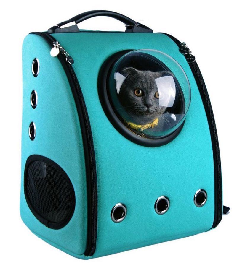 Переноски рюкзаки для животных модные рюкзаки в школу