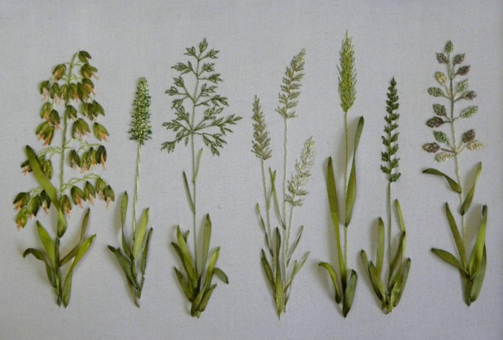 Вышивка лентами травы луговые