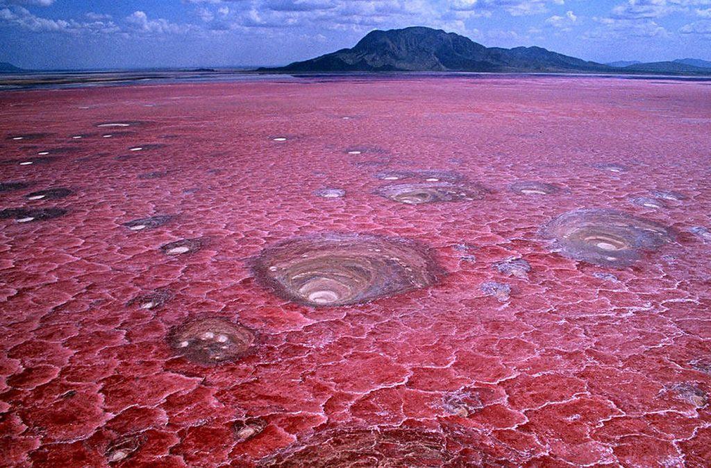 Красное озеро Натрон (Lake Natron)