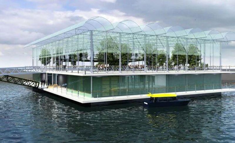 В Нидерландах открылась первая в мире «плавучая» ферма Природа,Нидерланды,ферма