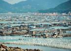 Плавучі села Китаю