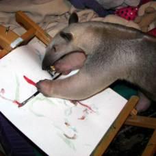Друзья рисуют картины брызгами красок